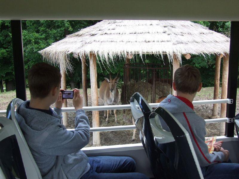 Wycieczka do ZOO Safari w Czechach